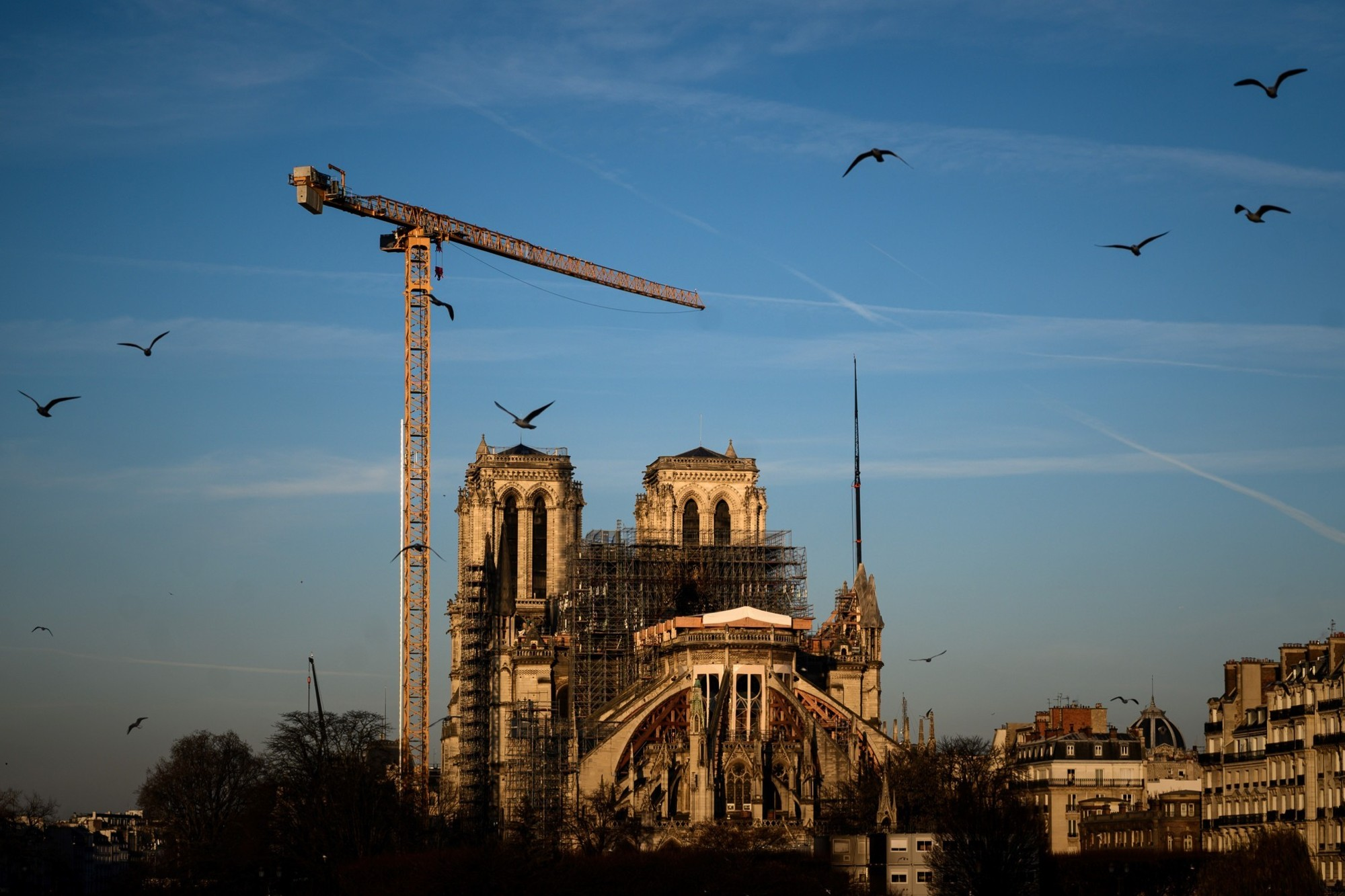 Notre-Dame de Paris : find out all about his visit in virtual reality