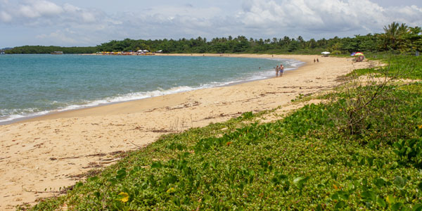Uncrowded beaches: Santo André, Bahia