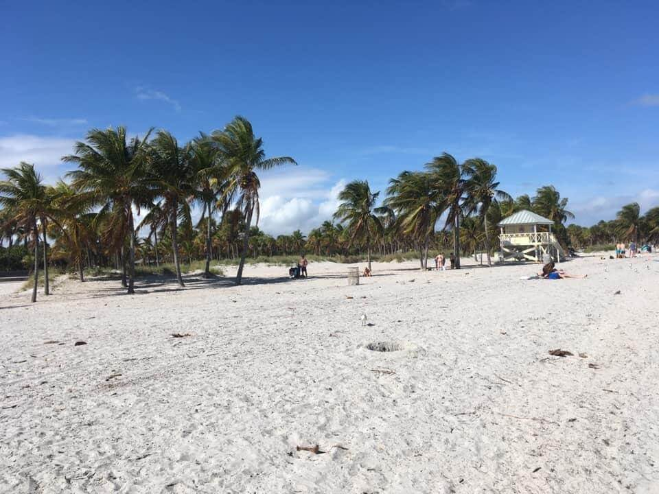 Florida road trip in February with the family | TRAVEL AND CHILDREN